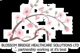 Blossom Bridge Healthcare Solutions LTD